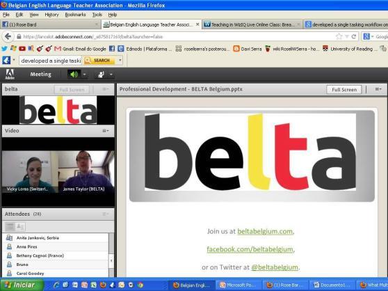 A screen capture of the webinar (Photo by Roseli Serra)